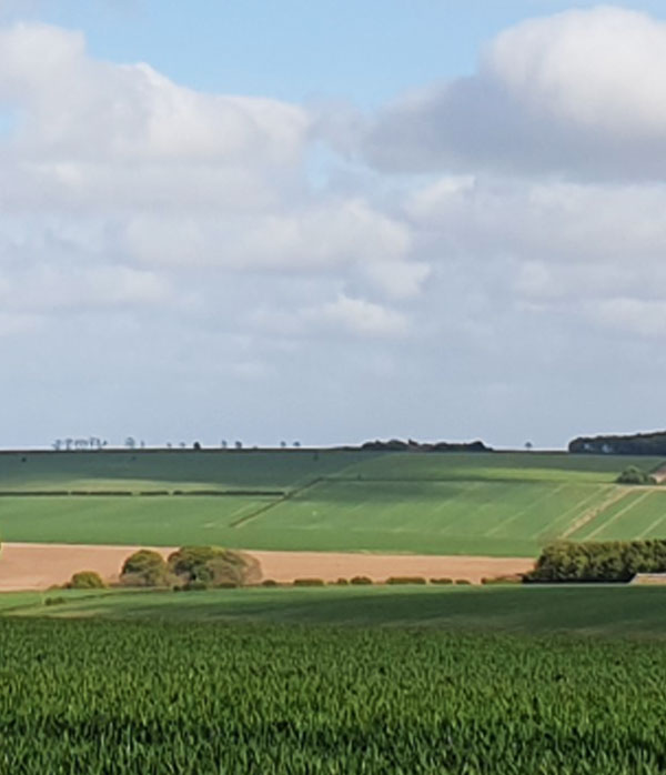 Around the Wolds